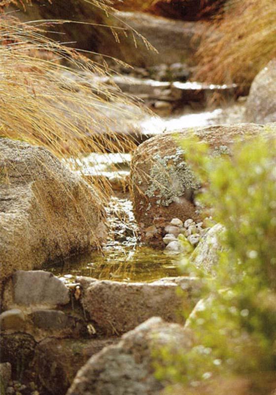water gardens landscape design in bendigo luke bullock