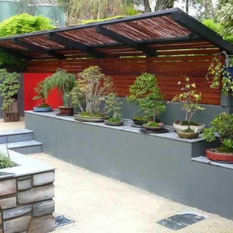 Japanese Garden in Bendigo